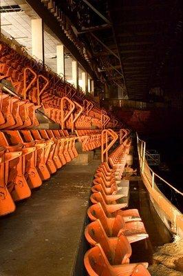 Aud orange seats.jpg